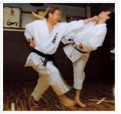 shotokan_karate_do_int